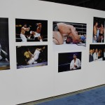 2012 World Jiu-Jitsu Expo Wall